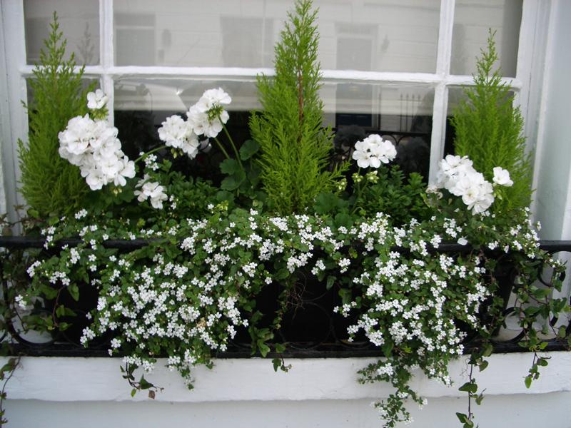 Artificial Garden Ideas For Balcony