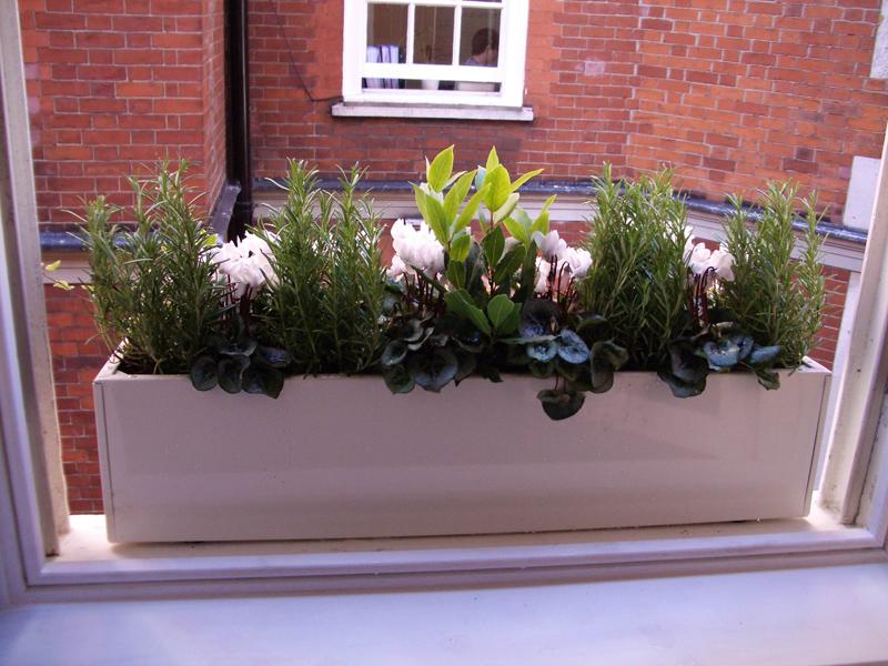 Balcombe Street Window Box Company